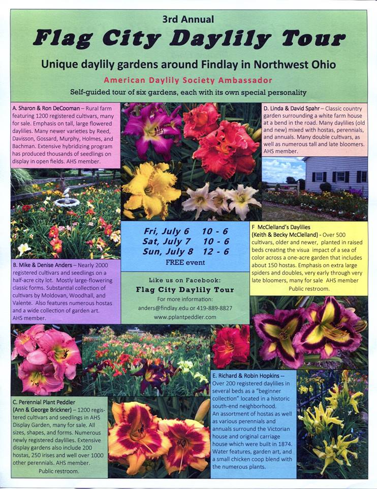 Flag City Daylily Tour Flyer - 3rd Annual - 2018