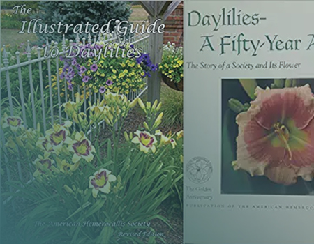 American Daylily Society Image