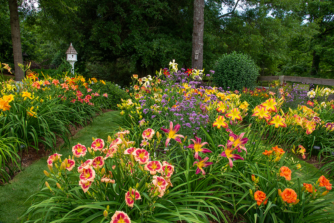 The Garden of Claude Carpenter